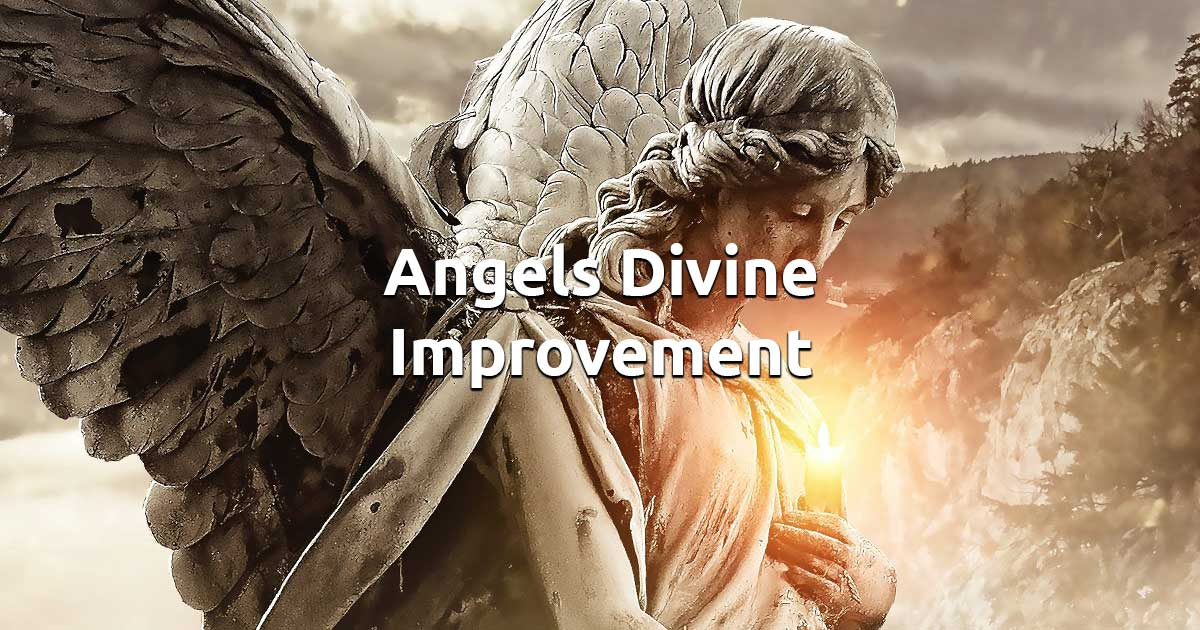 Divine Improvement Angel Card Reading - Spirit Navigator